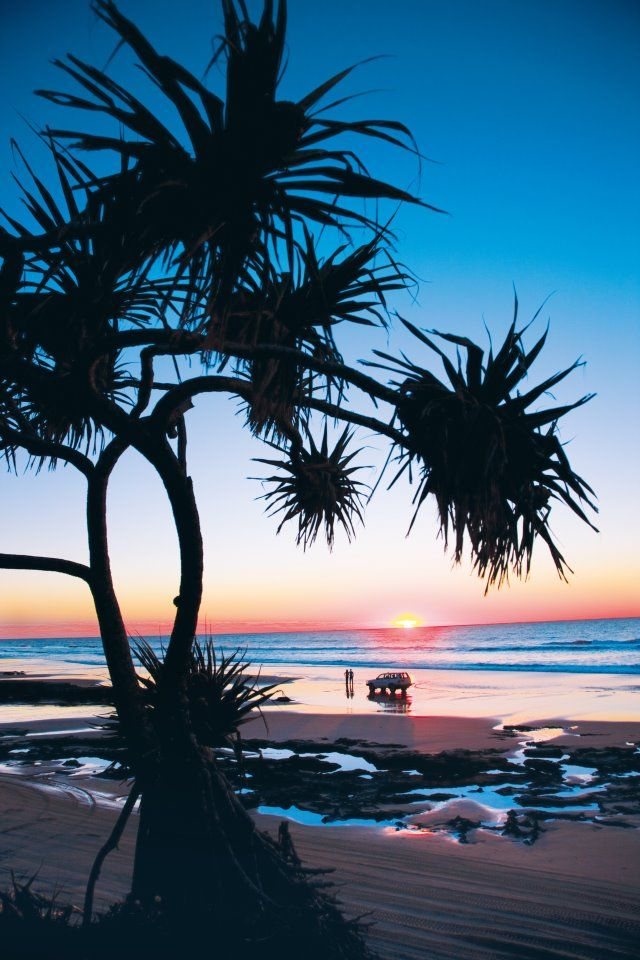 Fraser Island, the southern coast of Queensland, Australia,