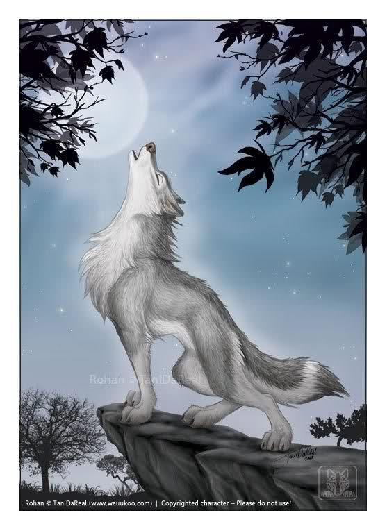 Howling Wolf Cartoon Alchessmist Images