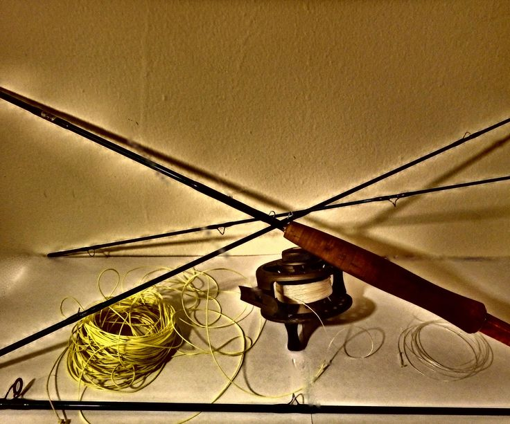 Fly fishing setup for beginners fishing tips fly