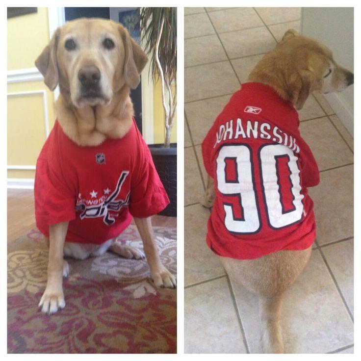 Twitter fan @hiphip_jorgee's dog rocks the red.