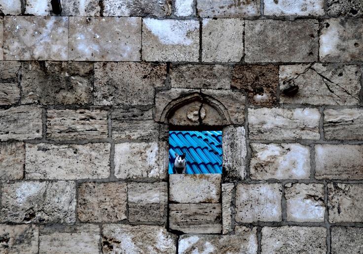 Sivas, Turkey. photo by Angel Lohez