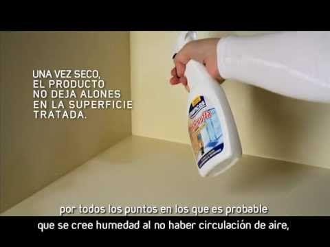 C mo eliminar el moho definitivamente limpieza en hogar - Como quitar moho de la pared ...