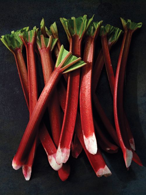 Good Stalk: Rhubarb - Saveur.com  4 awesomely delicious rhubarb recipes.  scroll down a bit to find the links.