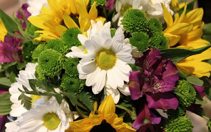I tuo fiorista a Roma: basta chiamarci 06.3054546. Consegna entro GRA di Roma è GRATIS www.laflorealedis... #fiori #consegna #roma #composizioni #festa #compleanno #matrimonio #battesimo