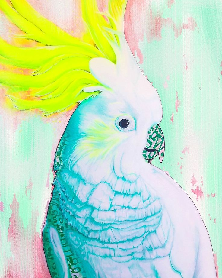 Cockatoo Memory Giclée art print by Kerise Delcoure. This artwork depicts an Australian White Cockatoo, which was carefully hand painted and collaged using acrylic paint, aerosol paint and paper on canvas, then rendered digitally. Available at https://society6.com/kerisedelcoure and https://www.redbubble.com/people/kerisedelcoure.