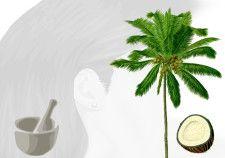 Ricetta: balsamo cocco vaniglia