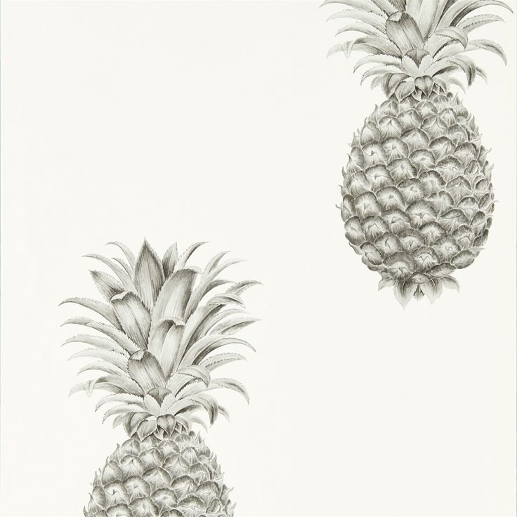 Sanderson - Traditional to contemporary, high quality designer fabrics and wallpapers | Products | British/UK Fabric and Wallpapers | Pineapple Royale (DART216324) | Art Of The Garden Wallpapers
