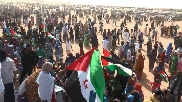 Embajador Emilio Cárdenas sobre el conflicto de Sahara Occidental.