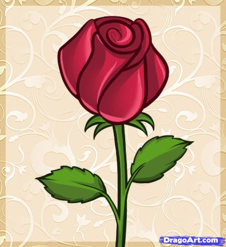 The 25+ best Easy rose drawing ideas on Pinterest | Easy to draw ...