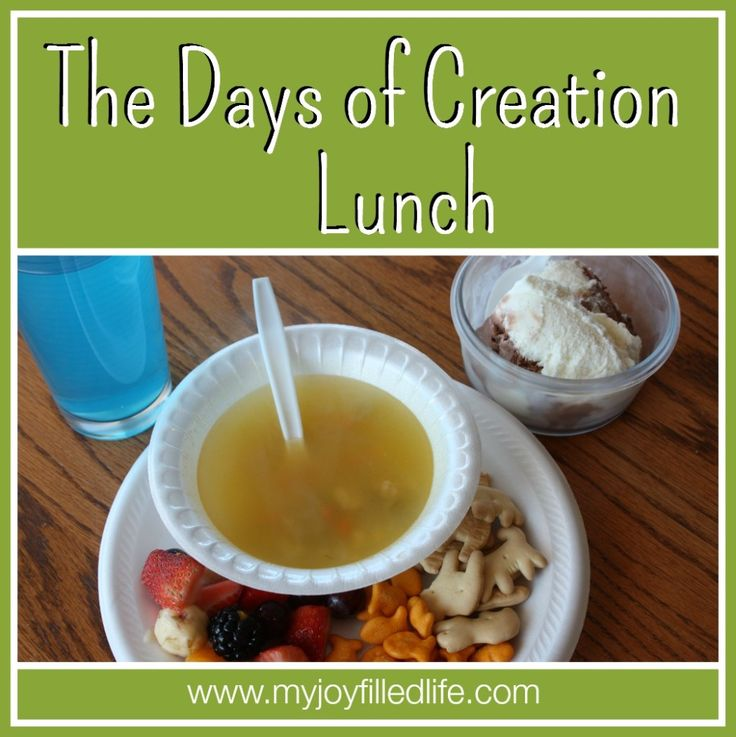The Days of Creation Lunch - Take your kids through the days of creation with The Days of Creation Lunch!  This post is part of a blog hop that features an activity for every chapter in The Jesus Storybook Bible.