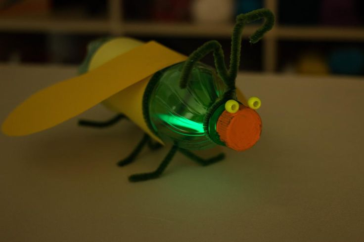 Glowing Firefly Recycled Bottle Craft | AllFreeKidsCrafts.com
