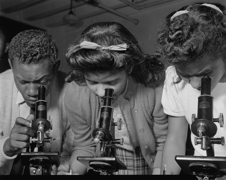 Students use microscopes at Bethune-Cookman College, Daytona Beach, Fla., February 1943 - Rare, Moving Photos of Black Life During the 1930s and '40s