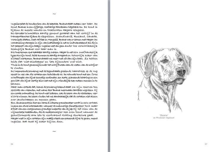 "Bwana, the Rhodesian ridgeback, one of the illustrations in ""Schetsboek"""