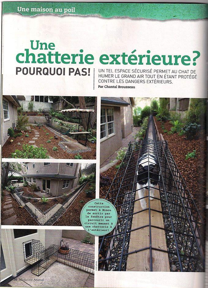 cat habitat | ... Home of Habitat Haven, Cat Enclosure - Outdoor Cat Enclosures - Catios