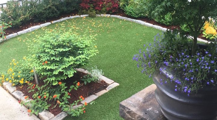 23 Best Dupont Foreverlawn 174 Select Synthetic Grass Images