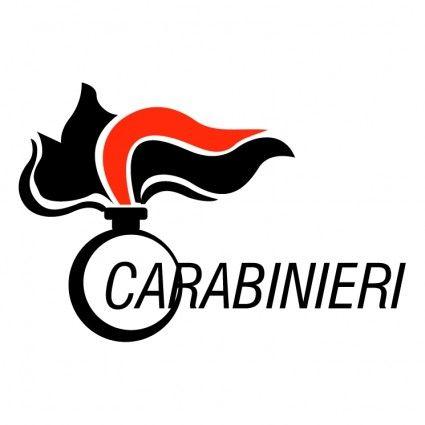 COMUNICATO STAMPA - COMANDO GENERALE DELL'ARMA DEI CARABINIERI - http://www.sostenitori.info/comunicato-stampa-comando-generale-dellarma-dei-carabinieri/277098
