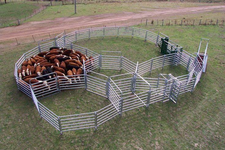 19 Best Cattle Corral Design Images On Pinterest