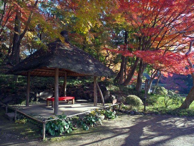 東京都の小石川後楽園の2017紅葉情報。例年の色づき時期や見頃、地図・天気・交通アクセス情報はもちろん、ライトアップ日時やイベントなど開催情報をご案内。クチコミ・穴場情報も募集しています。