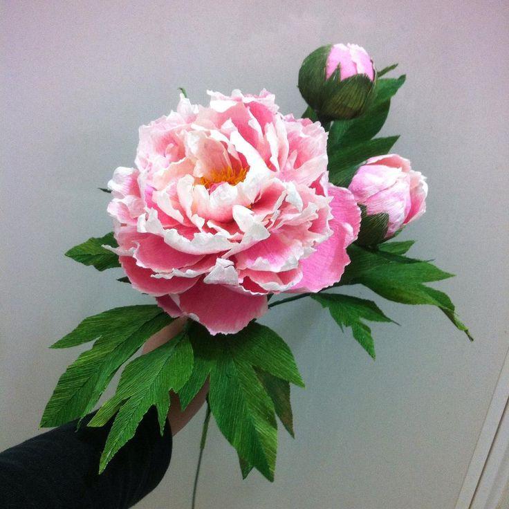 #paperflowers #paperflower #paper #crepepaper #crepepaperflowers #crepepaperflower #peonyflower