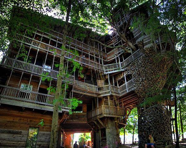 Ağaç Ev Ustaları'nın favoriler: En güzel 30 ağaç ev - TLC Tv Resmi İnternet Sitesi