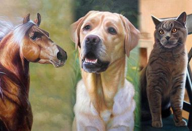 Tier Gemälde, Individuelle Ölgemälde von Ihrem Foto    Animal oil-paintings, modify your own painting..  #paintify #arts #kunst #deco
