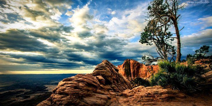 Morze, Kanion, Chmury, Drzewo, Skała