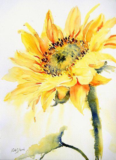 Ruth S Harris        Watercolor  Beautiful