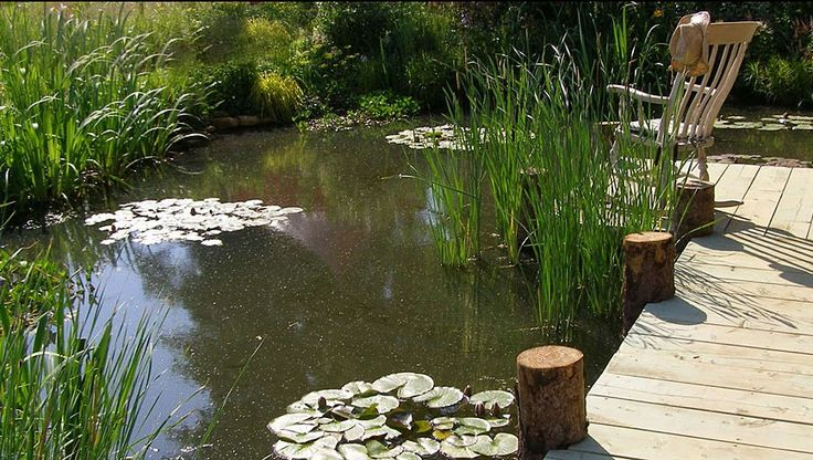 Formal and Natural Garden Pond Designs | Landscape Garden Designers, Reading, Berkshire | Pete Sims