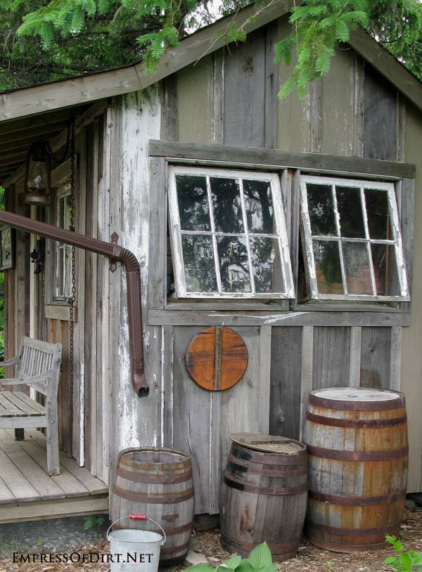 Rustic barn board shed with repurposed windows for ventilation. See the entire Victorian Kitchen garden tour!