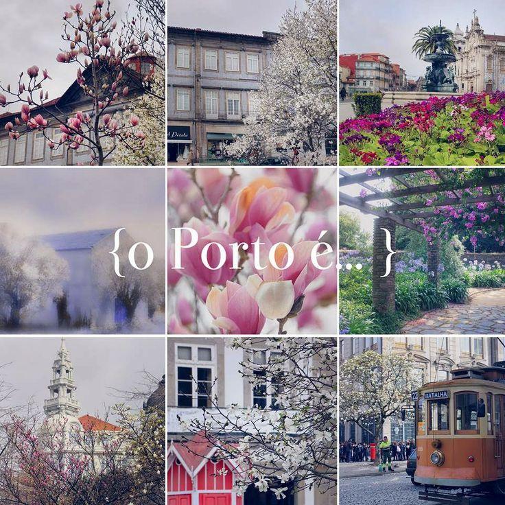 o Porto é... a chegada da primavera