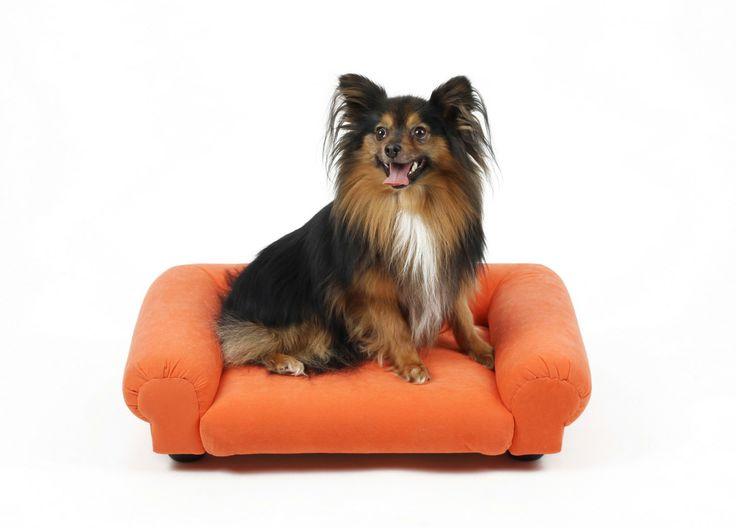 Petbed Susan - luxusní pelíšek pro psy ve stylu kompaktní pohovky se zakulacenými okraji