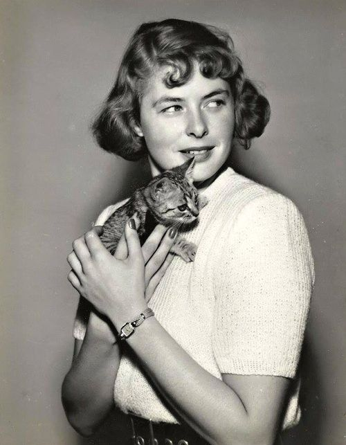 Ingrid Bergman | Chats et célébrités | Pinterest | Cats, Cat people and Pets
