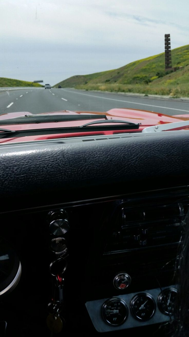 Collecting bugs in a 50 year old muscle car!