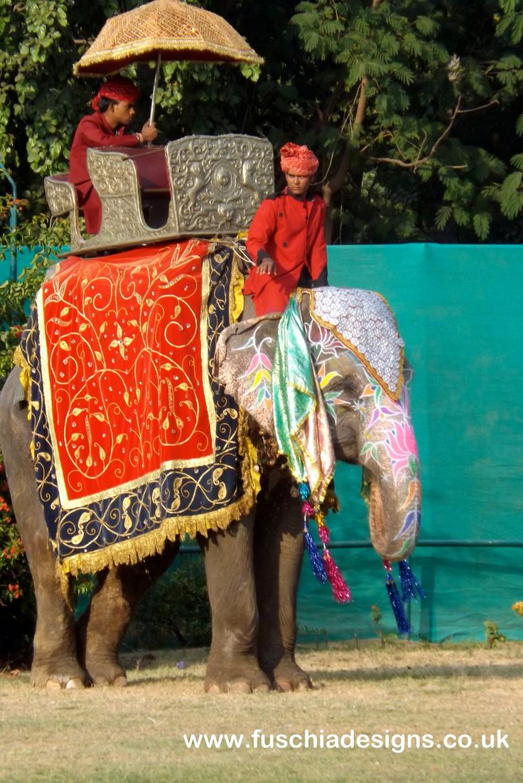 Elephant polo at the Jai Mahal Palace Hotel in Jaipur India.  By www.fuschiadesigns.co.uk.