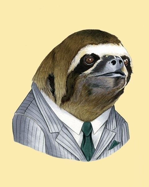 Sloth art print by Ryan Berkley by berkleyillustration on Etsy, $18.00