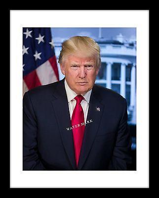 President Donald Trump 11x14 Print of Official Portrait USA GOP Republican
