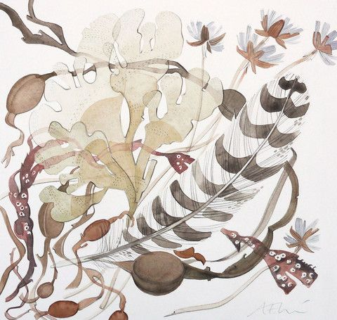 Seaweed, Thrift and Feather - Angie Lewin - watercolour