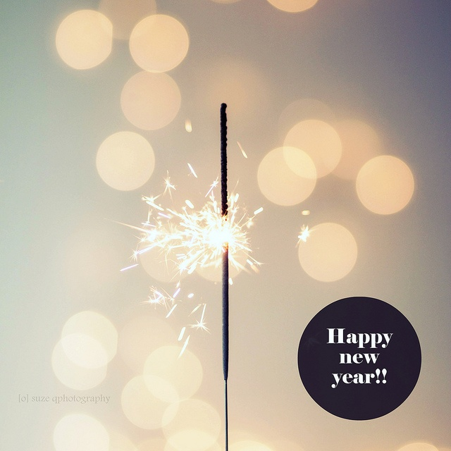 happy 2013 to all you beautiful pinners! [o] suzeq photography, via Flickr.