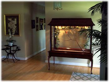 DIY small bird aviary using a writing desk, wood, wire and moulding