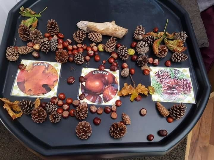 Autumn sorting activity