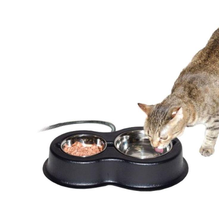Cat Bowl Pet Food Thermal Kitty Water Dish New Kitten Starter Frame Drinking  #CatBowl
