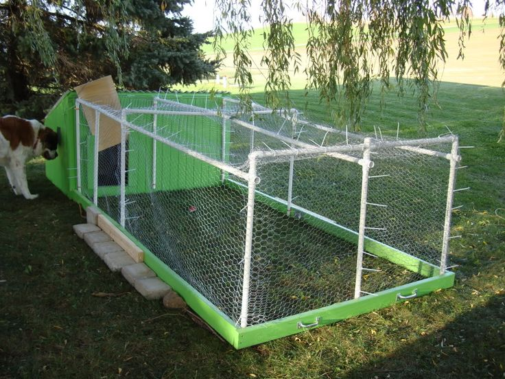 Pvc pipe chicken tractor plans all things duck for Pvc chicken tractor plans