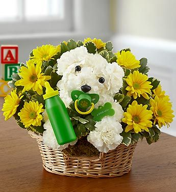 New Baby Puppy Dog™- a-DOG-able® arrangement of white carnations, yellow poms and variegated pittosporum, accented with a baby bottle and pacifier $59.99- $79.99 #adogable #newbaby