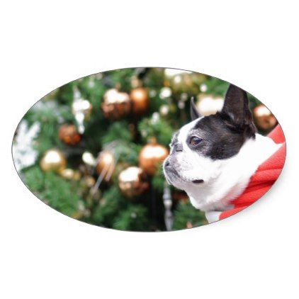 Boston Terrier Pug Dog Christmas Oval Sticker - christmas craft supplies cyo merry xmas santa claus family holidays