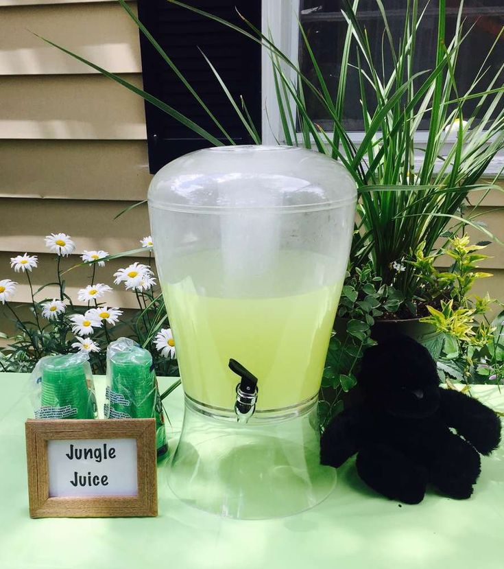 King Kong Birthday Party Ideas | Photo 2 of 25