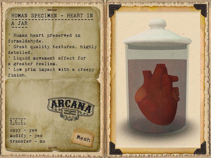 {A} Human Specimen - Heart in a Jar