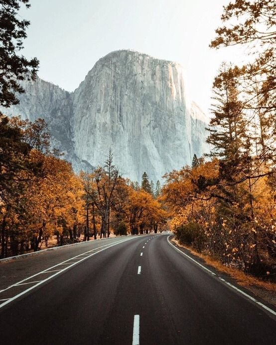 Yosemite National Park California by CaliforniaFeelings.com california cali LA CA SF SanDiego