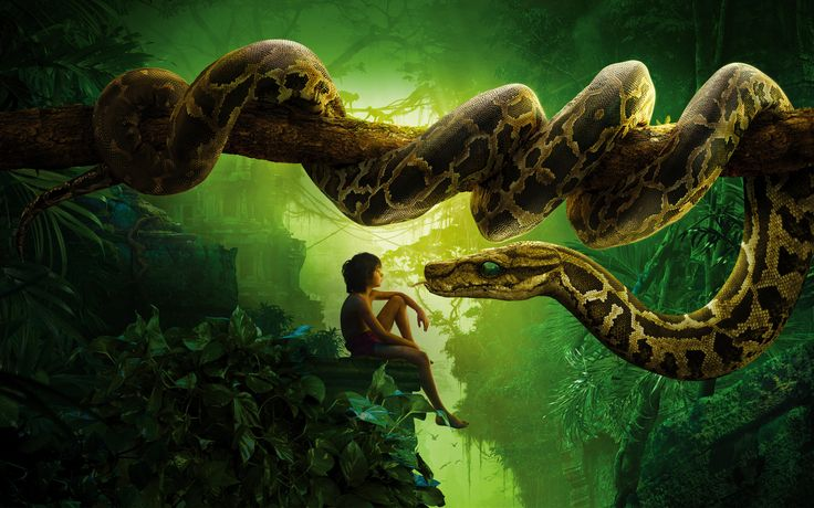 Jungle Book Snake Kaa Mowgli - This HD Jungle Book Snake Kaa Mowgli wallpaper is based on The Jungle Book N/A. It released on N/A and starring Neel Sethi, Bill Murray, Ben Kingsley, Idris Elba. The storyline of this Adventure, Drama, Family, Fantasy N/A is about: After a threat from the tiger Shere Khan forces him to flee the... - http://muviwallpapers.com/jungle-book-snake-kaa-mowgli.html #Book, #Jungle, #Kaa, #Mowgli, #Snake #Movies
