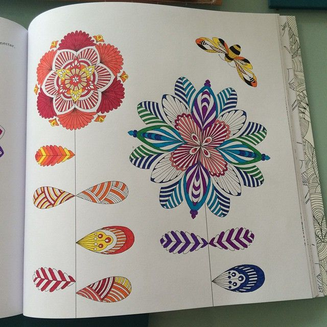 MillieMarotta Colouringbookforadults Adultcolouring Colouringiscool Bigkid Nofilter Animal KingdomAdult ColoringColoring BooksFlowerJohanna