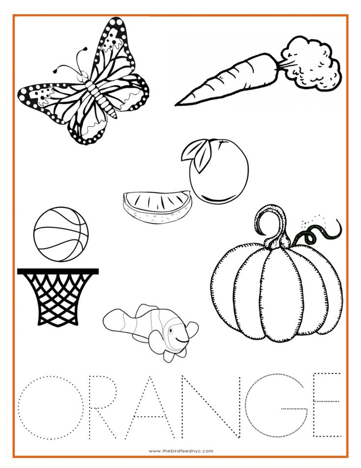 ORANGE Color Activity Sheet & other colors the Preschool